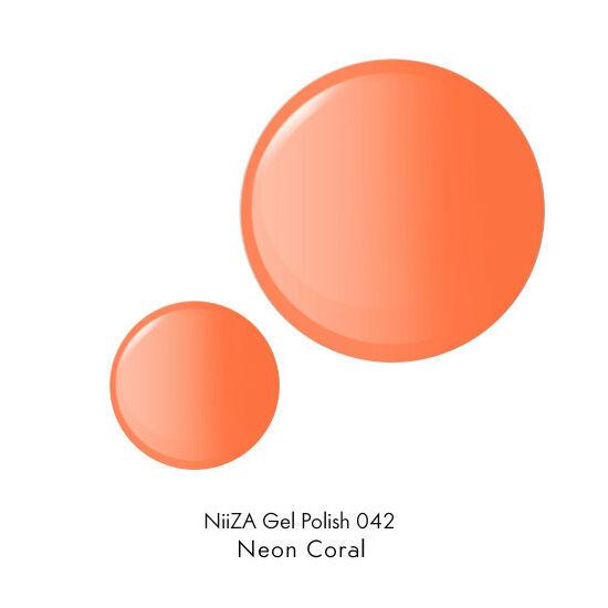 NiiZA Gel Polish - 4ml 042