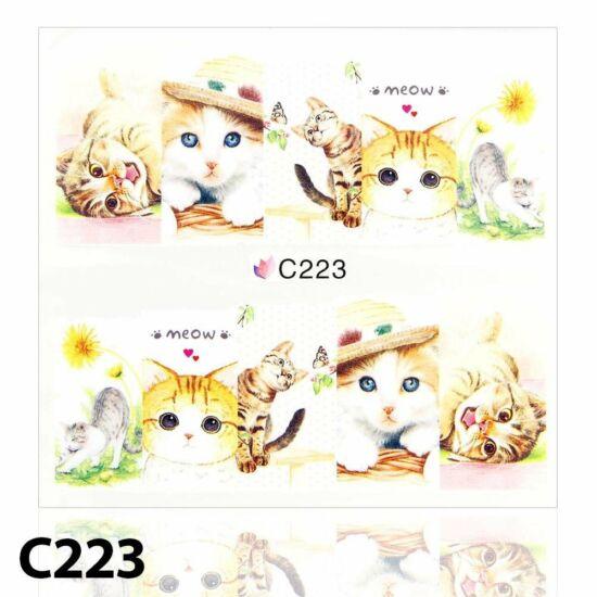 Körömmatrica C223